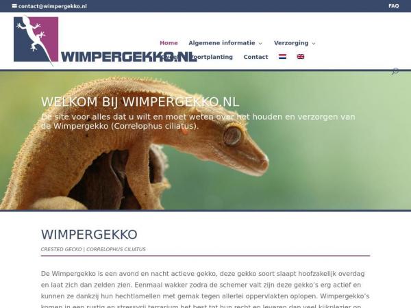 wimpergekko.nl